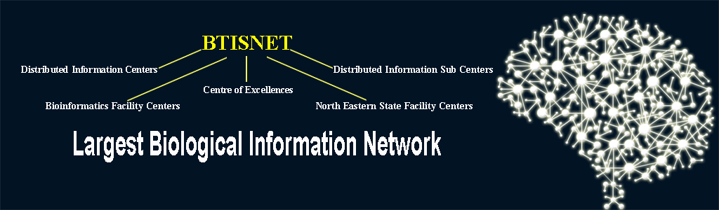 Network of Information